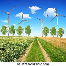 Dirt road with wind turbines.