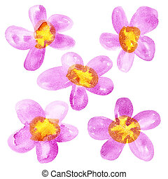 Pink - yellow watercolor flowers isolated over the white...