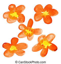 Yellow - red watercolor flowers isolated over the white...