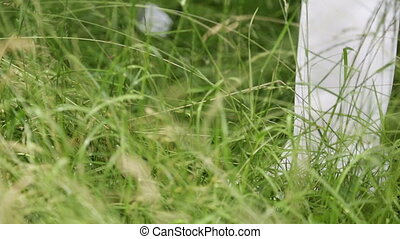 Close up of a golfer standing in high meadow - Close up of a...