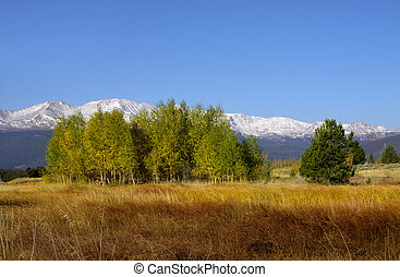 Scenic autumn landscape in colorado - Scenic autumn...