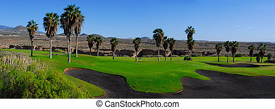 golf course panoramic with palm trees