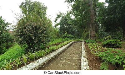 Path Park - In Botanical Garden Batumi place to relax with...