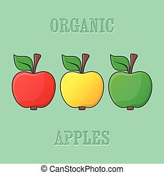 Red yellow green apples - Red yellow green organic apple...