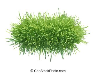 Vector illustration tuft of grass for the banner