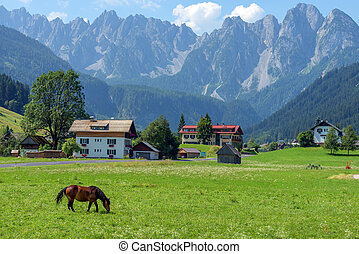Highway - Green valley in Gosau village at sunny day. Alps,...