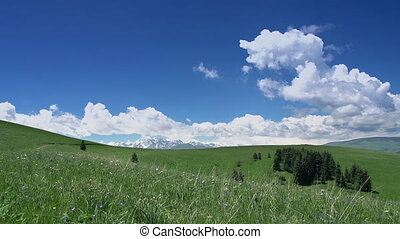 Clouds Float Over the Meadows - Beautiful white clouds...