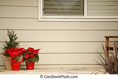 poinsettias on the front porch - holiday colors with copy...