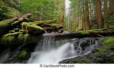 Panther Creek Falls in Washington - High Definition Movie of...