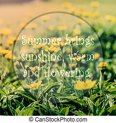 Meaningful quote on blurred yellow flower background, summer...