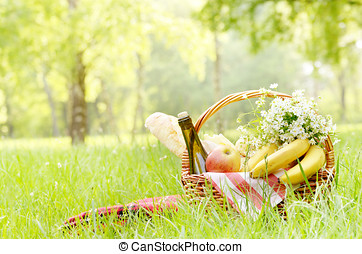 Picnic basket with apples bananas cheese and wine on green...