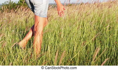 Girl hand touch the grass in the field meadow - A mans hand...