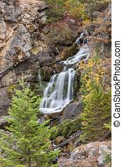 cascadas, exuberante,  Washington