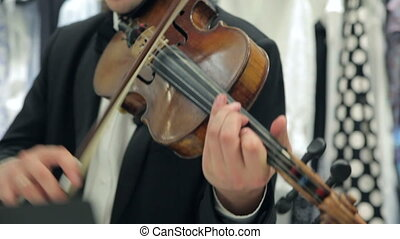 Play The Violin and Cello - Musician Playing The Violin Bow...