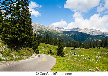 Road and green meadows in valley. Austrian Alps