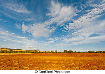 Plowed Fields of Spain in a Autumn