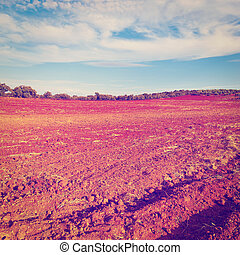 Plowed Fields of Spain in a Autumn, Instagram Effect