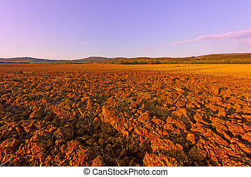 Plowed Fields of Italy in a Autumn at Sunset