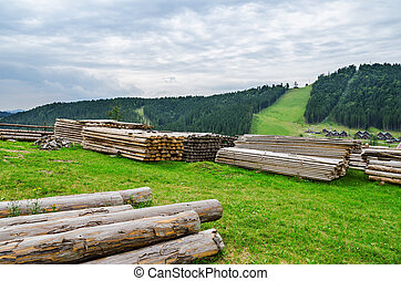 logs in mountain. start of construction