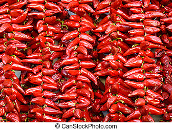 Strings of Espelette peppers drying - Strings of PDO...