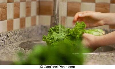Woman preparing lettuce