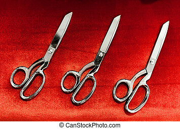 Scissors for the Grand Opening ceremony