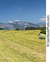 Landscape in Haute Provence - Rural landscape in the Durance...