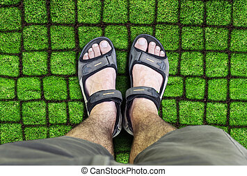 Man standing on the grass - Black sandals on the grass A man...