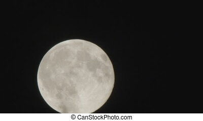 Full moon in the night sky over the trees and clouds. - Full...