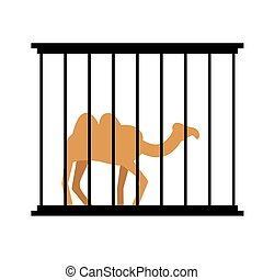 Camel in cage Animal in Zoo behind bars Desert wild animal...