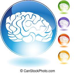Brain Crystal Set - Brain crystal isolated on a white...