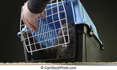 pet cage carrier - Owner closing the door of pet cage...