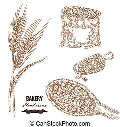 Cereals set. Hand drawn sketch illustration wheat, barley,...