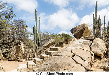 Steps Carved Out of Solid Rock - Arid and Dry desert with...