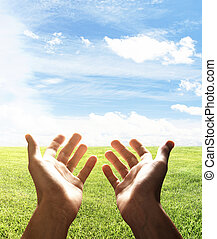 hands reach for field, close up
