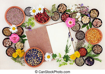 Herbal Medicine Ingredients - Health care using herbal...