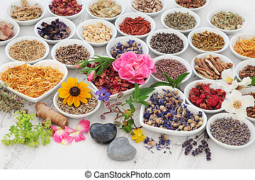Therapeutic Herbs and Flowers - Large herb and flower...
