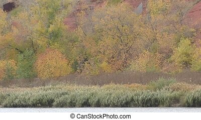 Autumn paints the southern Urals - Nature of southern Urals...