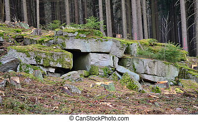 blocks of stone in the forest, South Bohemia, Czech Republic