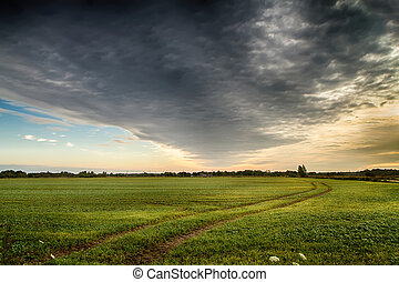 fields in the evening - Lithuanian mounds images during the...