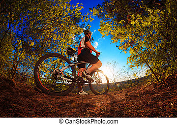 Man riding a bicycle in nature