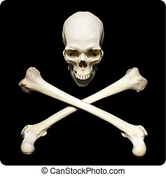 Pirate simbol - Real human skull with srossed bones