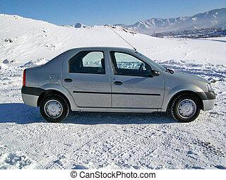 Car Reno Logan