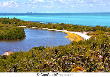 isla contoy sand in mexico sunny day wave - blue isla contoy...