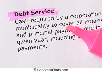 Debt Service words highlighted on the white background