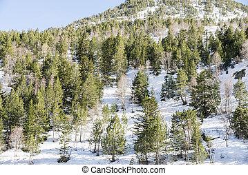 snowy mountains in Andorra la Vella