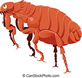 Cartoon Flea - Vector image of a cartoon brown flea