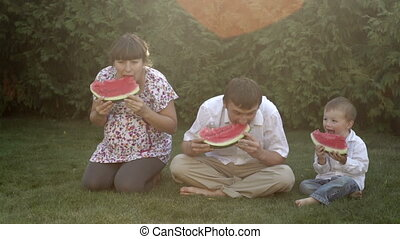 family picnic in the park eating