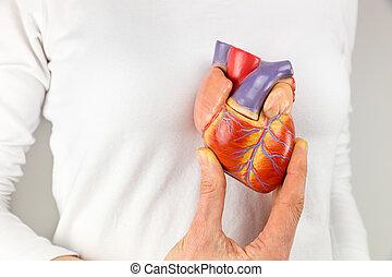hembra, mano, tenencia, corazón, modelo, en, frente,...