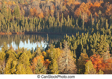 Small lake among trees with fall color in northern Minnesota